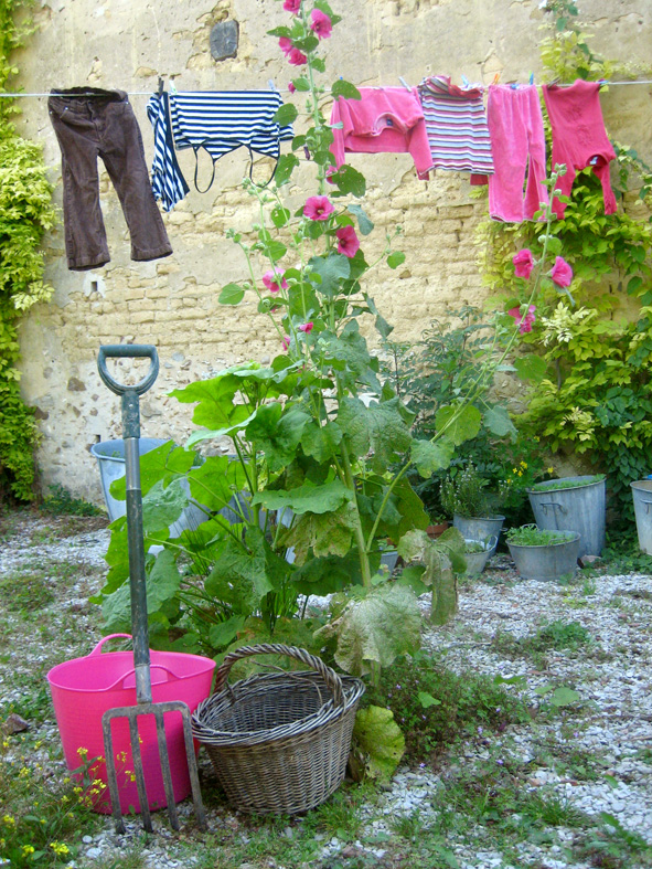 Clothesline with flower and gardening tools