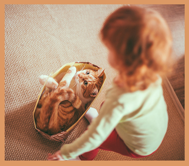 #Christian Bortes #cat #redheads #girls #little girls# #Children #play with animals
